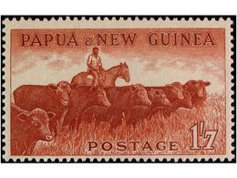 PAPUA NEW GUINEA - Papua Nuova Guinea