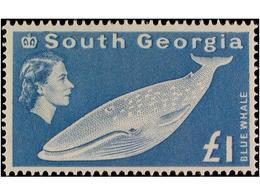 FALKLAND: SOUTH GEORGIA - Georgia Del Sud