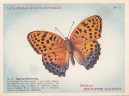 CHROMO - Biscottes Clément - Papillons Diurnes Exotiques - Argynnis Childreni Gray - 13 - Animali