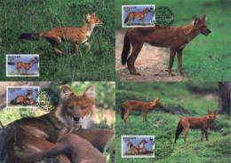 Ref. 7435 * NEW *  - BHUTAN . 1997. DHOLE ASIATIC RED DOG. PERRO ROJO ASIATICO - Bhután