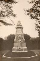 [91] Essonne > Briis-sous-Forges Carte Photo Le Monument Aux Morts - Briis-sous-Forges