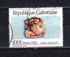 GABON  N° 508   OBLITERE  COTE 0.70€    COQUILLAGE ANIMAUX - Gabun (1960-...)