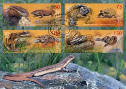 2019 Kyrgyzstan (KEP), Reptiles, Amphibians, Turtles, Snakes, Lizards, Frogs, Maxi Card - Reptiles & Amphibians