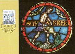 SUISSE. N°1156 Sur Carte Maximum De 1982. Verseau. - Astrology
