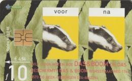 HOLANDA. FAUNA. TEJON - Badger (the & Boom). 2004. 10F. CG 022-01 (200) - Tarjetas Telefónicas