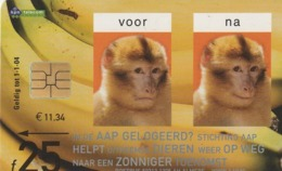 HOLANDA. FAUNA. MONO - Ape (monkey Shelter). 25F. CG 022-02 (201) - Tarjetas Telefónicas