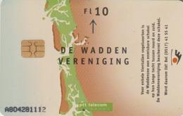 HOLANDA. CARIDAD. The Wadden Association Wadden 1. 10F. CG 007-02 (102) - Pájaros