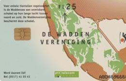 HOLANDA. CARIDAD. The Wadden Association Wadden 2. 25F. CG 007-03 (103) - Pájaros