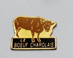 Pin's Le Boeuf Charolais  - ANIMAUX - Animaux