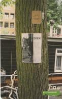 HOLANDA. GATOS. People & Pets, Affectionate. 10G. CD 004.04d (121) - Gatos