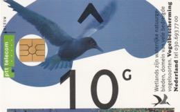 HOLANDA. Bird. 10G. CG011-01A (093) - Pájaros