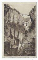 CPA - Algérie - Constantine - Gorges Du Rhummel - Constantine