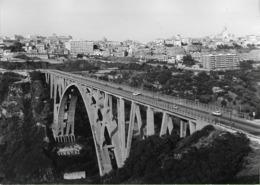 Catanzaro - REAL PHOTO (12,8 X 17,7 Cm) - Ponte Sulla Fiumarella - Calabria - Italia - Catanzaro