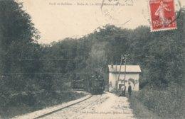 Forêt De Belleme (61 - Orne) La Halte De La Herse (ligne De Mortagne à Sillé Le Guillaume) Arrivée Du Train - Gare - France