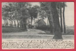 Veurne / Furnes - L' Avenue Hanssens - 1908 ( Verso Zien ) - Veurne
