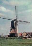 NEDERLAND - PAYS BAS - HOLLANDSE MOLEN - Pays-Bas