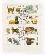 """OMAN - 1973 - Foglietto Da 8 Valori Tematica """" GATTI """" - Usati - (FDC17953) - Oman"""
