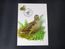 "BELG.2009 3898 FDC Mcard: Buzin "" Bécasse Des Bois / Hout Snip "" - 1985-.. Birds (Buzin)"