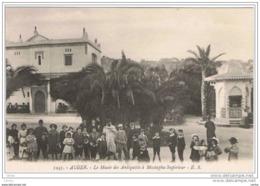 ALGER:  LE  MUSEE  DES  ANTIQUITES  A'  MUSTAPHA  SUPERIEUR  -  FP - Musei