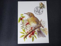 """BELG.1991 2226 FDC Mcard: Buzin """" Zanglijster / Grive Musicienne Obl. Brussel """" - 1985-.. Birds (Buzin)"""