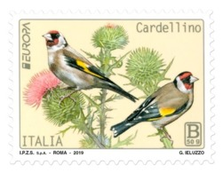 Italia Repubblica 2019 Europa 2019 - Cardellino Euro 2,60 MNH** Integro - 6. 1946-.. República