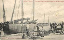 Belgique - La Panne - La Visite Des Filets Pour La Pêche Aux Harengs - De Panne