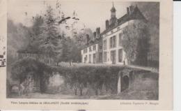 HAUTE MARNE -  Vieux Langres Château De CHALANCEY ( Société Archéologique ) - Frankreich