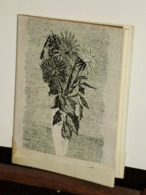 """PAROLE D'AMORE   Ain Zara Magno """" 1956  All''insegna Della Baita Van Gogh - Collections"""