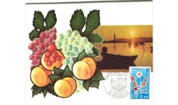 Carte / Languedoc Roussillon   /  Montpellier / 15-1-77 - Cartoline Maximum