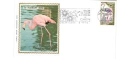 Enveloppe Premier Jour / Le Flamant Rose  / Caen  / 9-10-73 - FDC