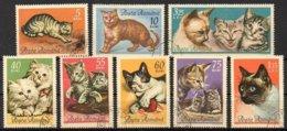 Rumänien 1965 MiNr. 2387/ 2394 O/used ; Hauskatzen - Katten