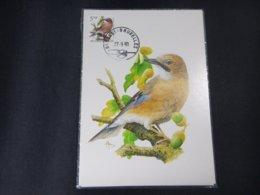 "BELG.1993 2526 FDC Mcard: Buzin ""  Geai Des Chênes / Vlaamse Gaai  "" - 1985-.. Birds (Buzin)"