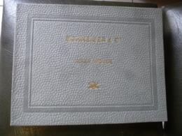 SCHNEIDER & Cie.    Acier Moulé.  Propriétés Et Applications. 1919 - Libros, Revistas, Cómics