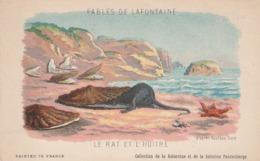 FABLES DE LA FONTAINE LE  RAT ET L,HUITRE - Contes, Fables & Légendes