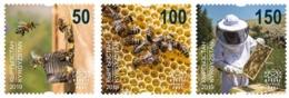 Kyrgyzstan. 2019  Beekeeping In Kyrgyzstan. - Api