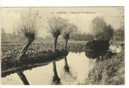 Carte Postale Ancienne Amiens - Dans Les Hortillonnages - Agriculture - Amiens