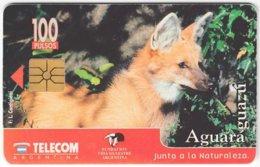 ARGENTINIA A-341 Chip Telecom - Animal, Fox - Used - Argentina