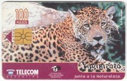 ARGENTINIA A-342 Chip Telecom - Animal, Cat, Jaguar - Used - Argentine