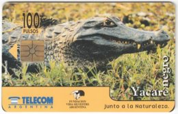 ARGENTINIA A-343 Chip Telecom - Animal, Crocodile - Used - Argentina