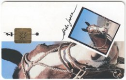 ARGENTINIA A-349 Chip Telecom - Occupation, Gaucho, Animal, Horse - Used - Argentine