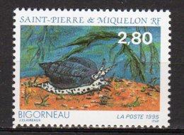 Saint-Pierre Et Miquelon Yvert N° 614 Neuf Faune Marine ( Bigorneau ) Lot 22-116 - St.Pierre & Miquelon