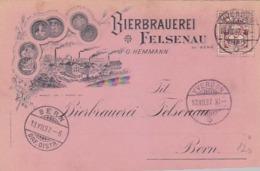 Bierbrauerei Felsenau Bei Bern - 1897            (P-184-60622) - BE Berne