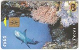 COSTA RICA A-191 Chip ICE - Animal, Sea Life, Fish, Shark - Used - Costa Rica