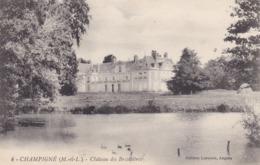 CHAMPIGNE - Château Des Briottières - Francia