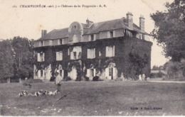 CHAMPIGNE - Château De La Frogeraie - Francia