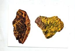 Carte Minerais D'uranium - Congo Belge - Autres