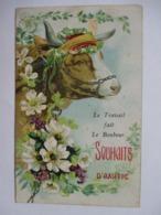 BOEUF   ...    LE  TRAVAIL  FAIT  LE  BONHEUR   .....       TTB - Cows