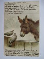 ANE  ET  PIGEONS       .....       TTB - Donkeys