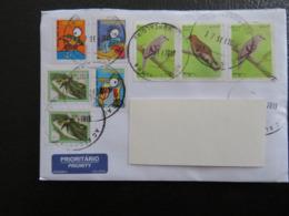 Brazil, Letter To Hungary, Birds, Children Drawings, - Brasile