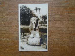 Egypte , Sphinx At Sakkara - Sphynx